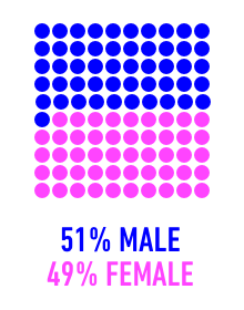 51% male, 49% female