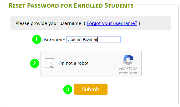 Enter your Tyndale Username, Check off I'm not a robot, Click Submit