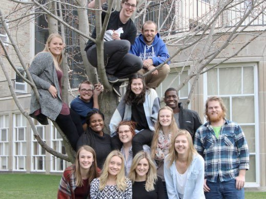 the members of the house council posing in front of and in a tree