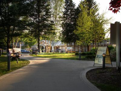 sunny walkway lined with lush green trees and buildings in the background of Muskoka Bible Centre